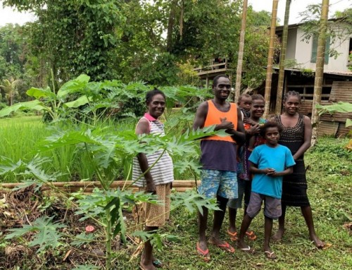 PiCCA Stories: Bougainville
